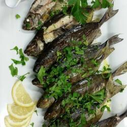 Potamos Seafood Restaurant Kourkounes