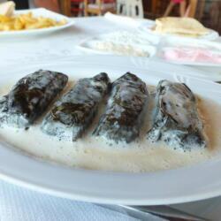 Stuffed Vine Leaves At Tonys Cyprus Tavern