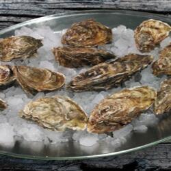 Agios Georgios Alamanou Fish Tavern Fresh Oysters From Oyster Tank