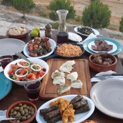 Agios Epiktitos Tavern Traditional Cypriot Meze