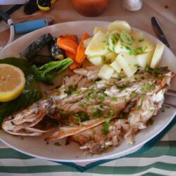 Nama Restauran Grilled Sea Bass
